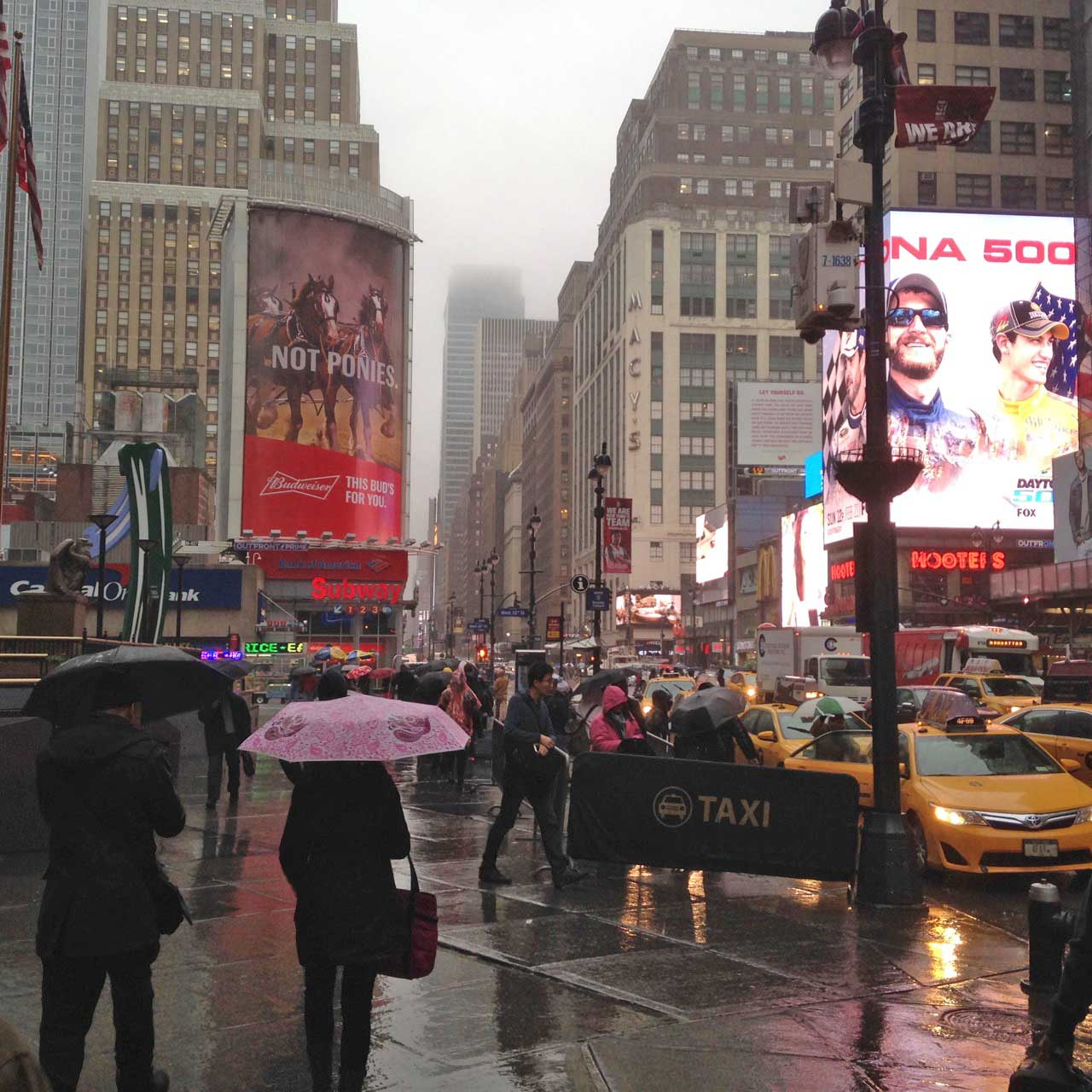 New York, now warm and wet